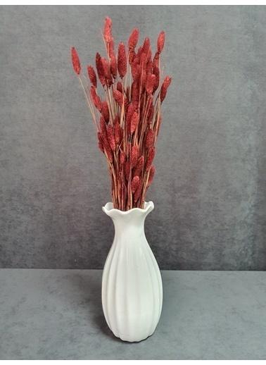 Kuru Çiçek Deposu Kuru Çiçek Kuş Otu Yapraklı 55-60 Cm Yeşil Kırmızı